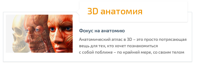 3D анатомия